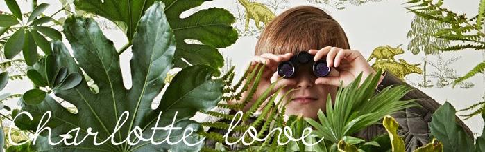 charlotte love blog