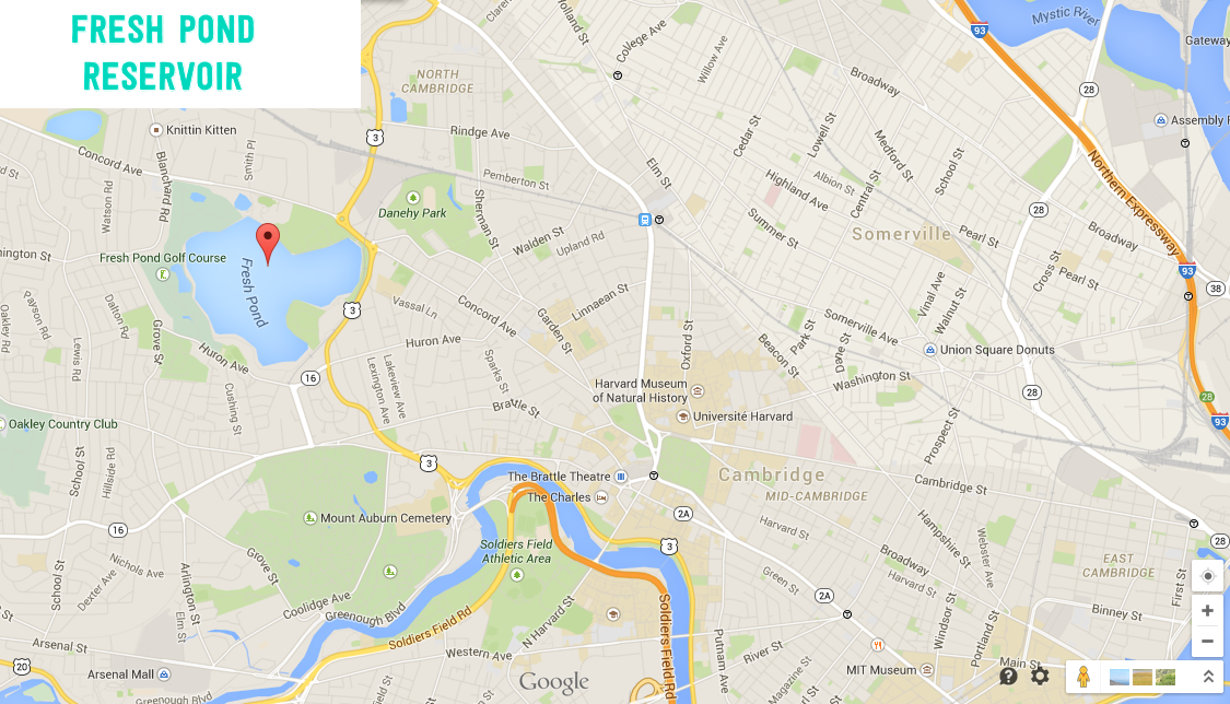 google map fresh pond cambridge ma
