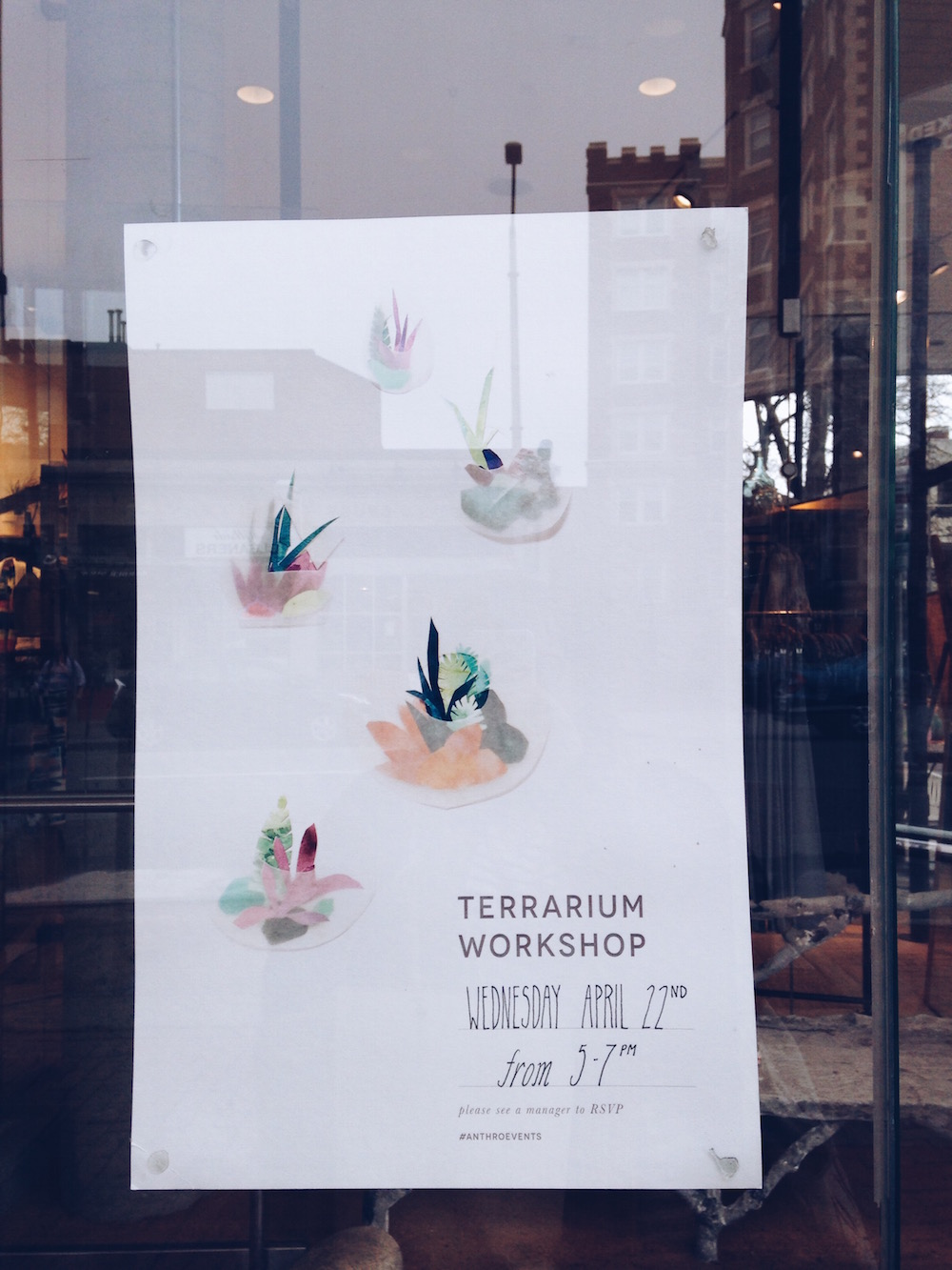 terrarium workshop Anthropologie Harvard