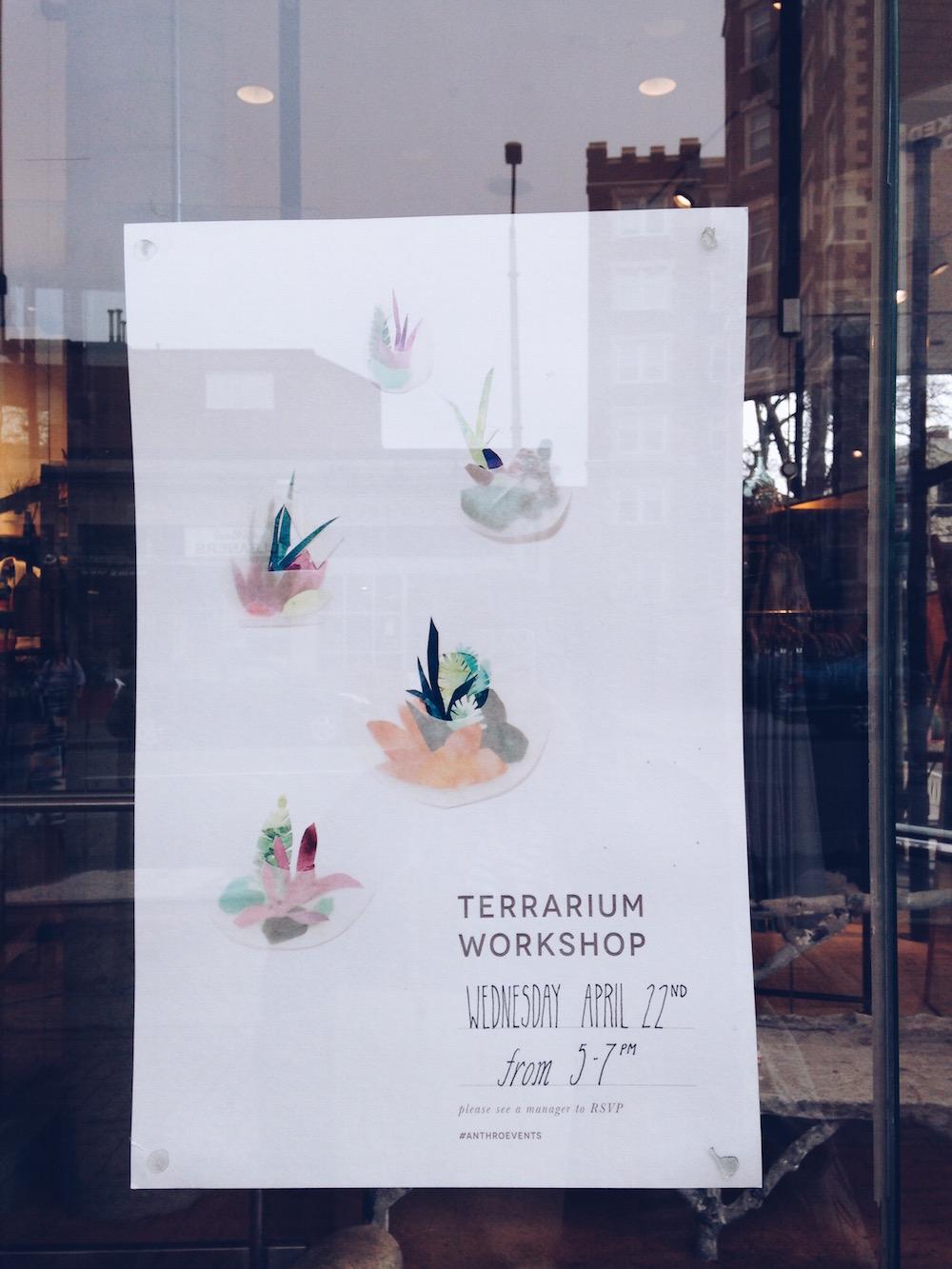 terrarium workshop Anthropologie Harvard