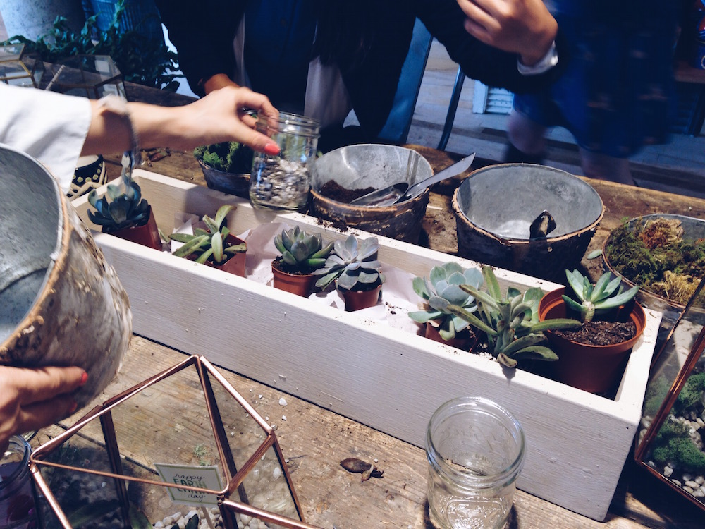 anthropologie terrarium workshop Earth Day